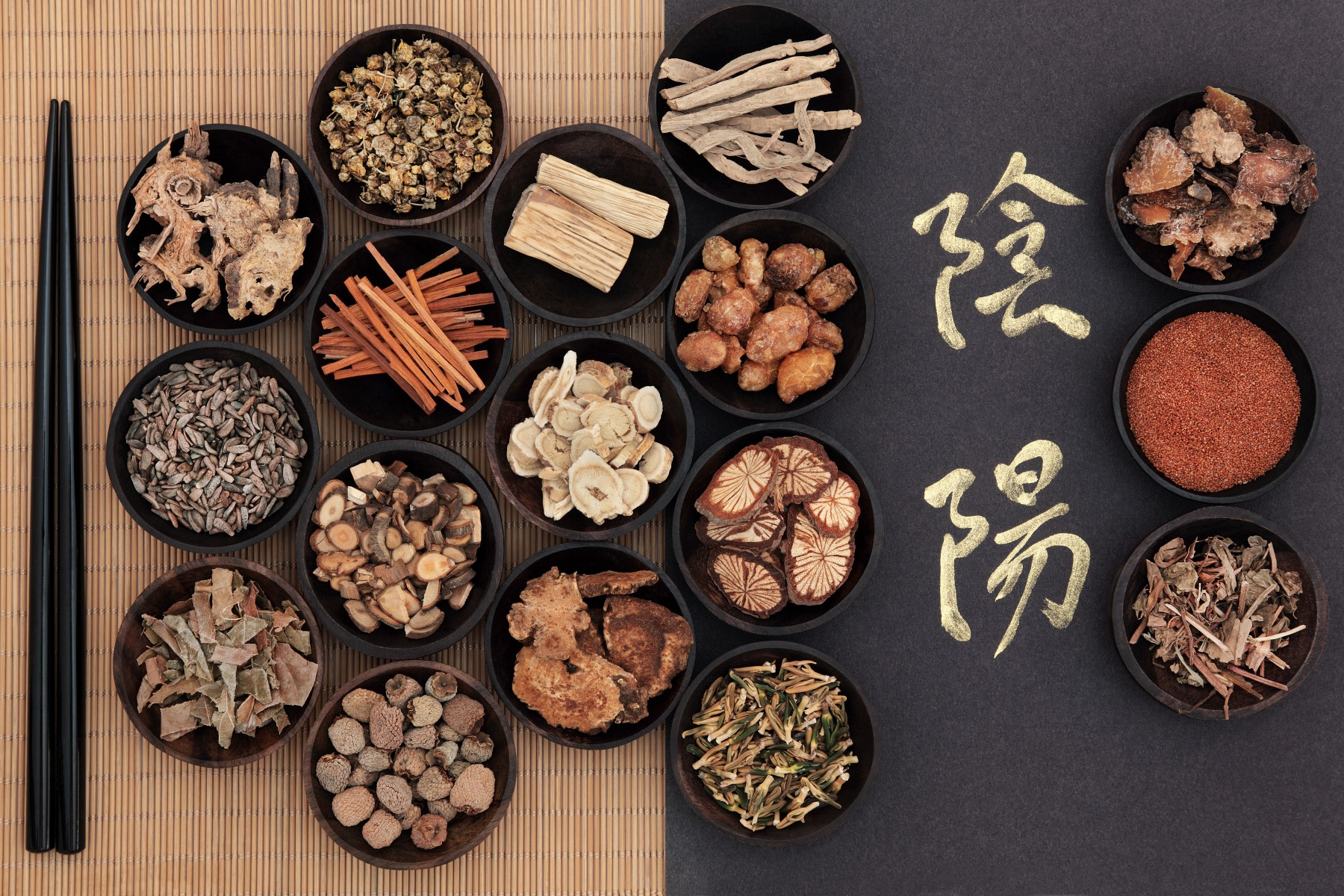 Ventura Chinese Herbal Medicines 2 - Fatty Liver – What You should Know